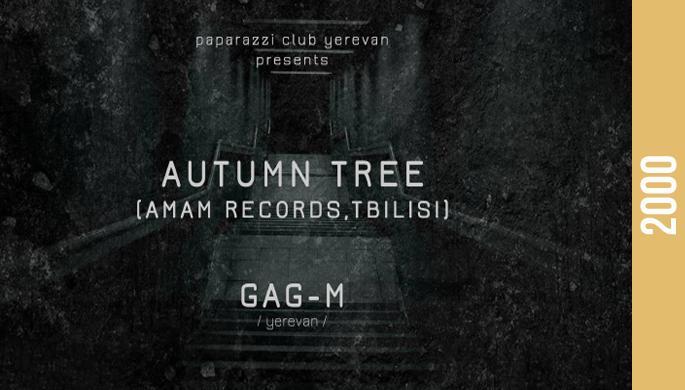Autumn Tree at Paparazzi Club